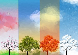 Four trees all look different, depending on their respective season, in a banner that represents all seasons.